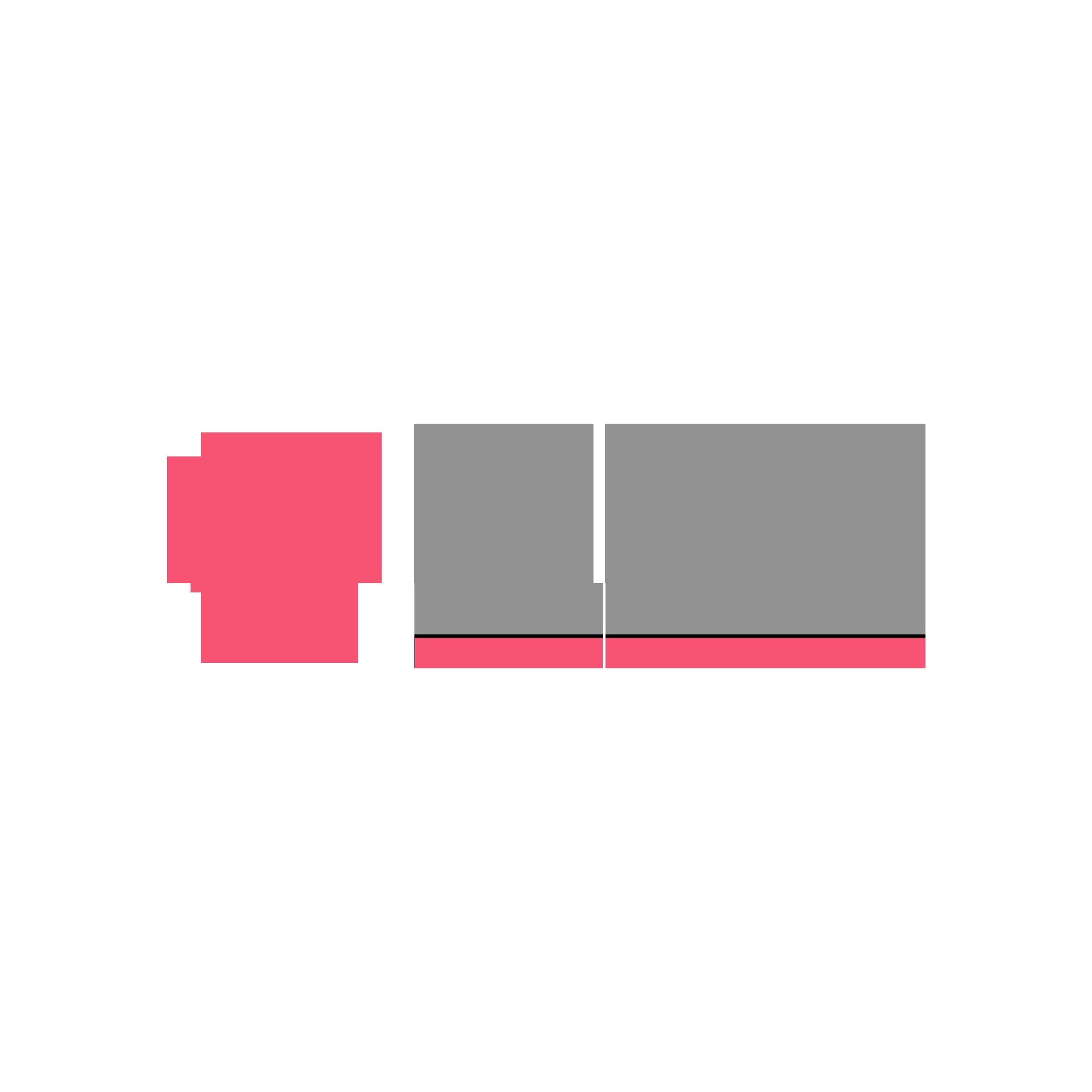 LOGO EDIANEZ CHUEIRI 2019